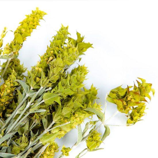 Grecja herbata ziołowa smaki grecji
